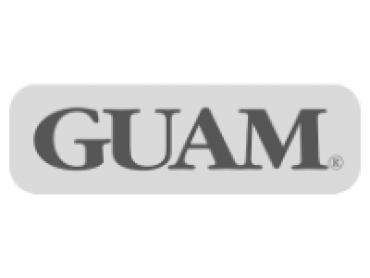 guam.png